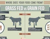 Grass Fed vs. Grain Fed Infographic