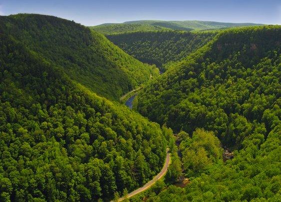 Pine Creek PA