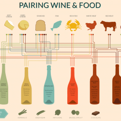 Wine Pairing Chart | Visual.ly