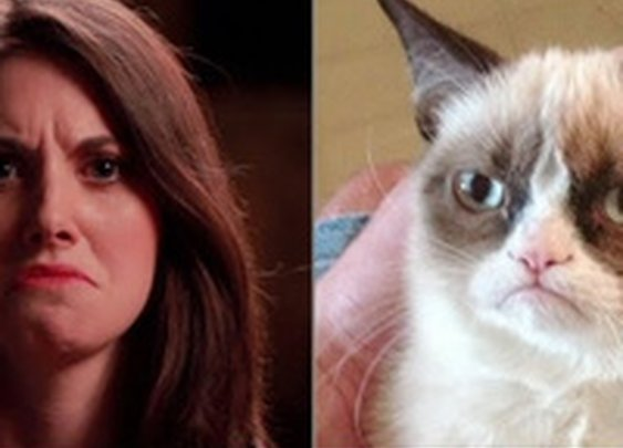 Alison Brie Recreates Popular Internet Memes