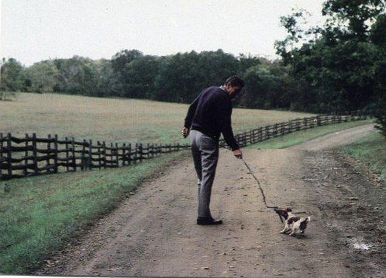 Ronald Reagan Walking His Dog in Middleburg, VA