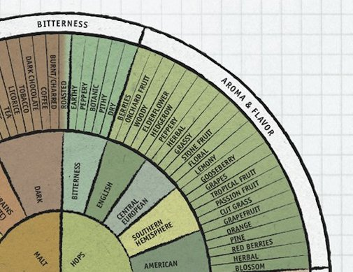 Daily Infographic, Beer Edition: The Beer Flavor And Aroma Wheel | Popular Science