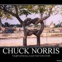 Chuck Norris - Demotivational Poster | FakePosters.com