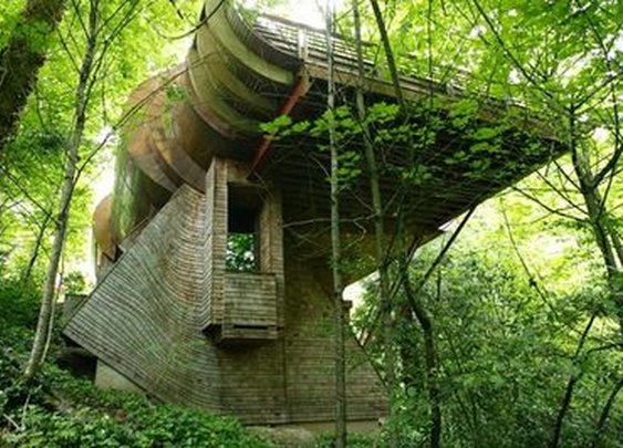 A Hobbit House In The Trees