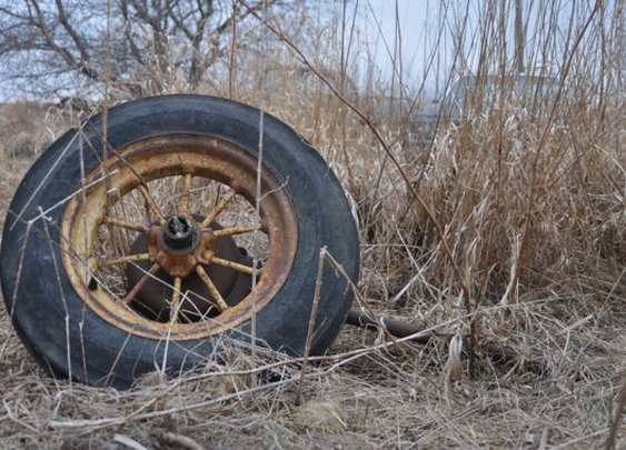 Nature Reclaiming A Tractor Tire  Digital by UnisonGeneral on Etsy