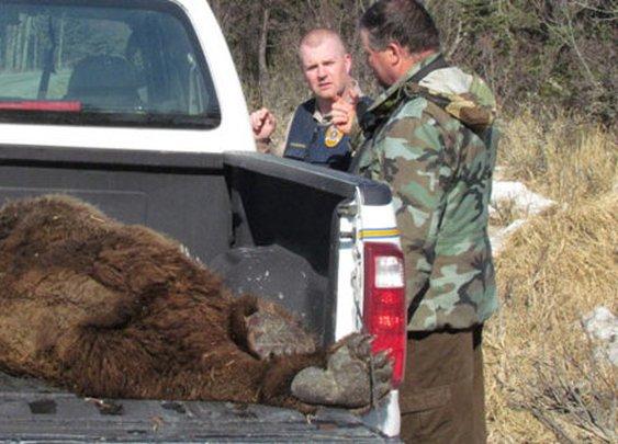 Alaska Man Fights Off Bear, Walks Away with Minor Injuries   ABC News Blogs - Yahoo!