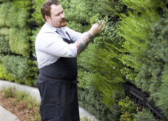 Atlanta Botanical Gardens Herb Wall