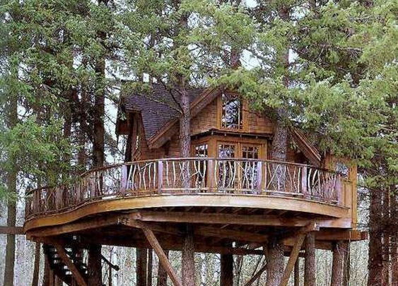 Washington Treehouse