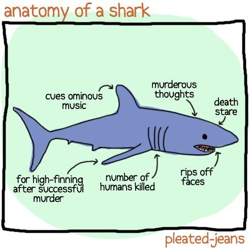 Anatomy of Sea Life (8 Pics) | Pleated-Jeans.com