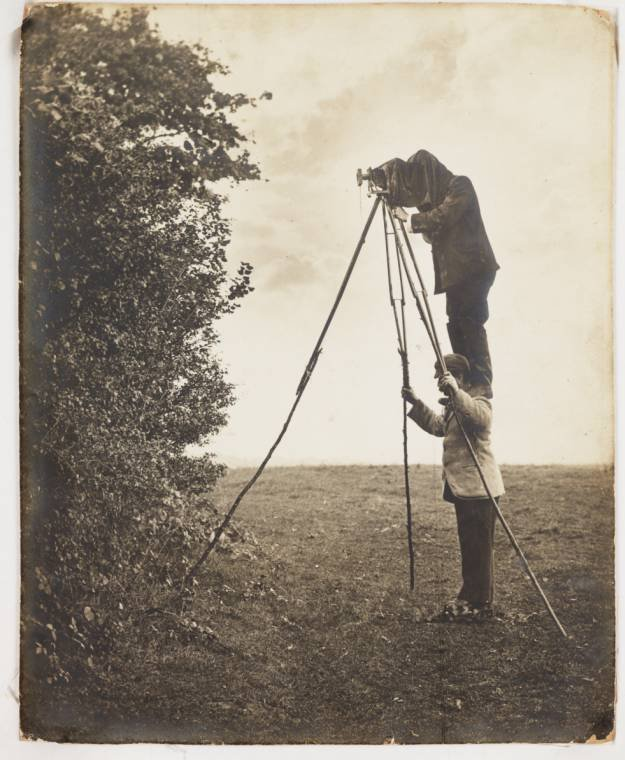 Photographing a nest