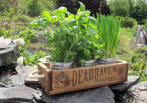 DEADRAVEN Manufacturing Co. | An industrial styled planter, perfect for the...
