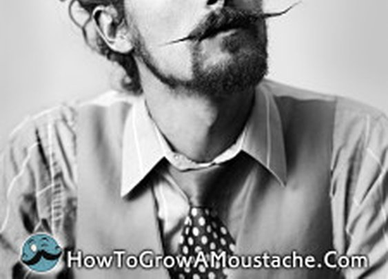 How to Grow a Moustache Feature Interview with The Suitcase Junket | How to Grow a Moustache