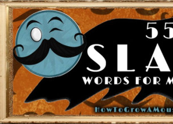 55 Slang Words For Moustache | How to Grow a Moustache