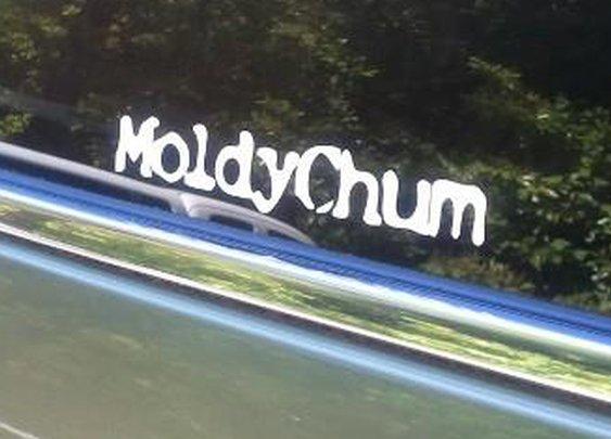 1977 TLC RestoredFJ40 | Moldy Chum