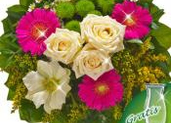 Spring  Flowers Delivery to Germany