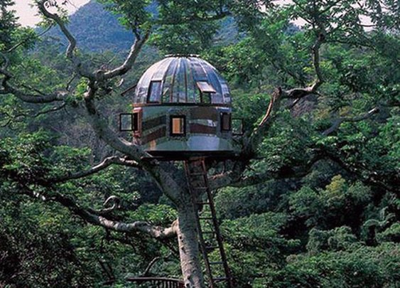 World's Most Extreme Tree Houses