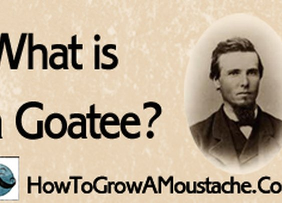 What is a Goatee? | How to Grow a Moustache