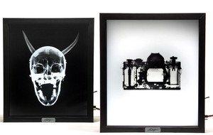 Mentalpieces: Lifestyle Art | TouchOfModern