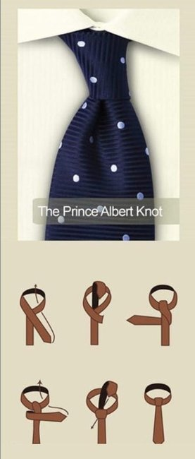 The Prince Albert Knot