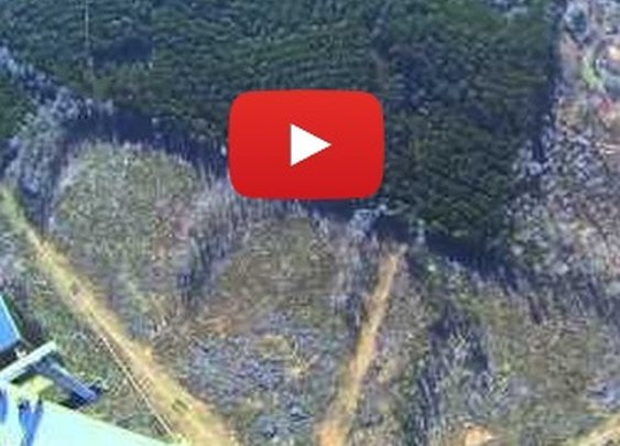 1st-person footage of standing atop a 2,000-foot tower and jumping off