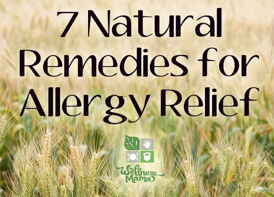 7 Natural Remedies for Allergy Relief - Wellness Mama