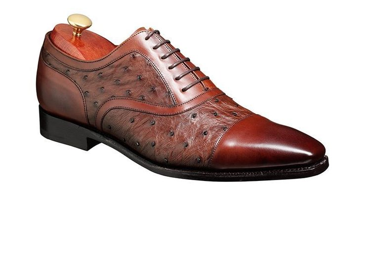 Barker Shoes - Puccini Brown Calf & Ostrich - 125th Anniversary