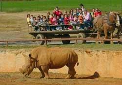 North Carolina Animal Park | Lazy 5 Ranch