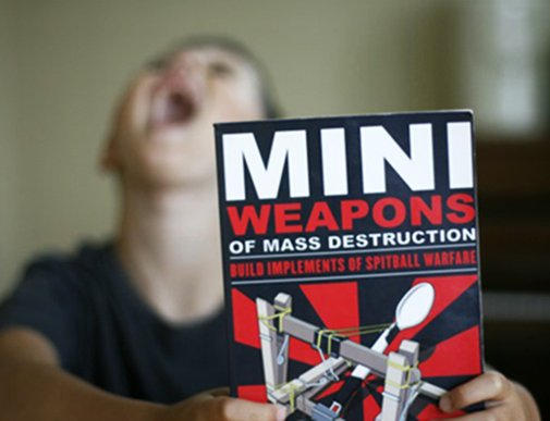 Mini Weapons of Mass Destruction [Book]