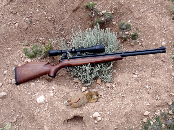 Crosman Benjamin Marauder .25 Air Rifle