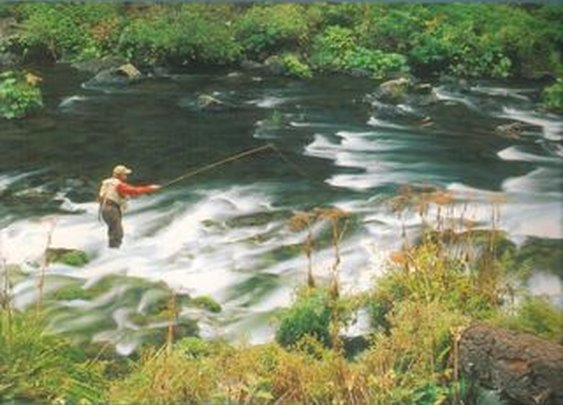 The Orvis Ultimate Book of Fly Fishing Review   How to Trout Fish - How to Fly Fish