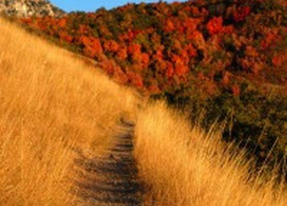 America's Ten Longest Trails