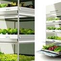 Kitchen Nano Garden | Co.Design: business + innovation + design