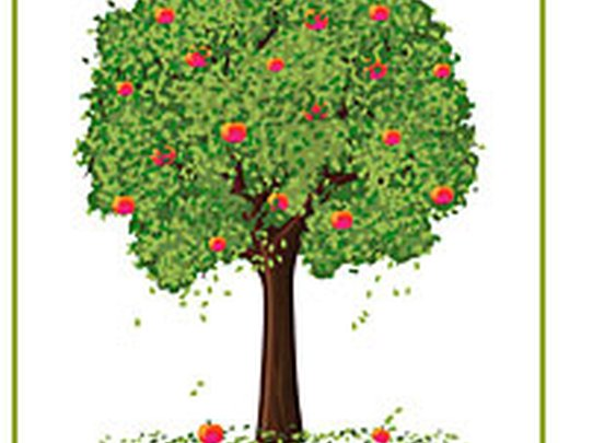 Apple tree for rent from beautiful NY State orchard