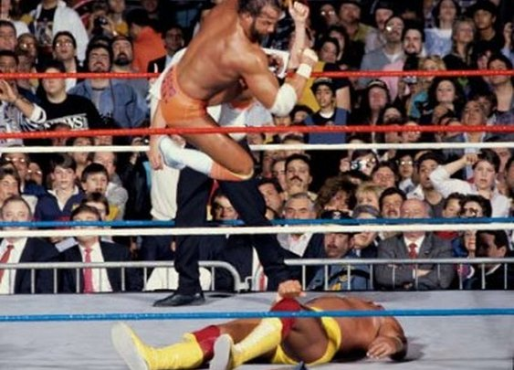Sabotage Times » WWE: The 10 Greatest Finishing Moves Of All-Time
