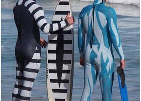 BBC News - Australian firm develops 'shark-proof' wetsuits