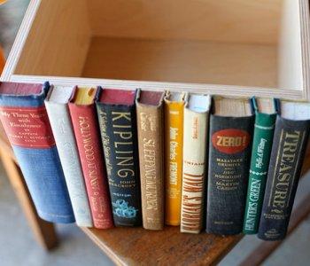 Modern Library Storage Bin   Uncovet