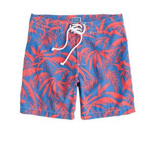 "7"" Board Shorts in Palm Leaves Print"
