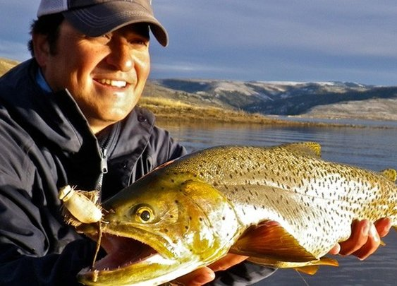 | Utah Fly GuidesUtah Fly Guides | Utah's Premium Fly Fishing Guide Service