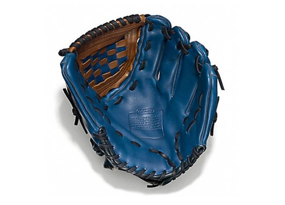 Coach Baseball Glove, the Heritage of a Sport | Baxtton