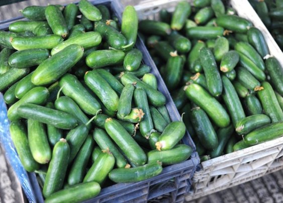 Kitchen Dilemmas 101: Here's what to do with too many cucumber. | Food Republic