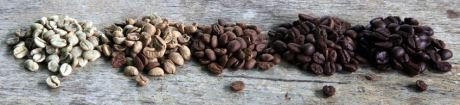 The importance of the coffee roasters