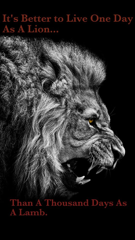 It's Better to Live One Day As a Lion | Be Legendary