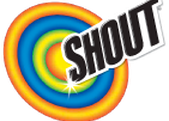 Shout® Wipes