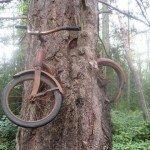 Wondered where I left my Raleigh Rider..