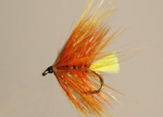 12 Pack Trout Fly Octopus Orange Bumble Size 10 | eBay