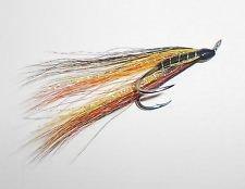 Salmon Fly Willie Gunn Tied on Partidge Salar Silver Double Hooks | eBay