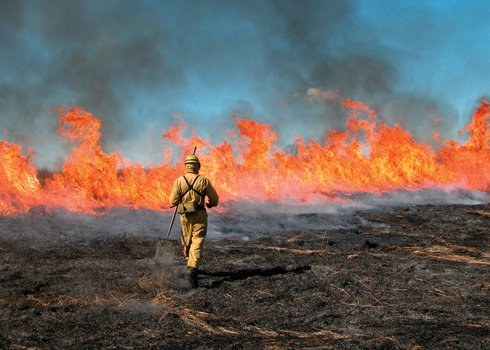 Firefighters, situational awareness, and mindfulness
