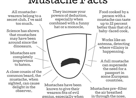 DOGHOUSE  |  Mustache Facts