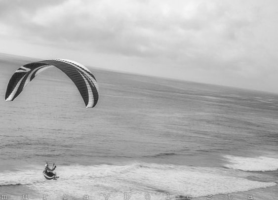 Black and White Ocean Photography Paraglider by MurrayBolesta