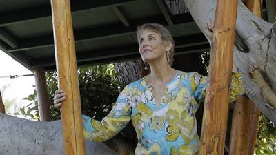 City Hall takes aim at a beloved Venice treehouse  - latimes.com